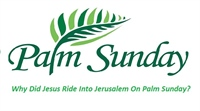 Five Mysteries of Palm Sunday: The Mystery of the Day